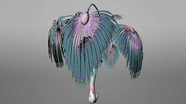 File:Pandora ROVR Warbonnet Fern.png