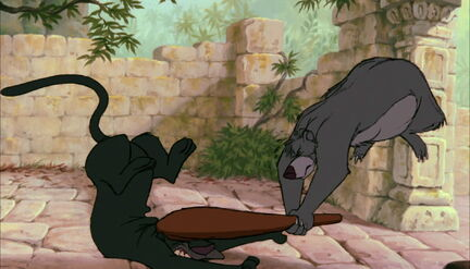 Bagheera the Black Panther has got knocked out with a club by Baloo the Bear