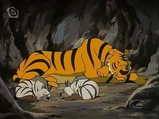 Shere Khan and Jackels Sleeping
