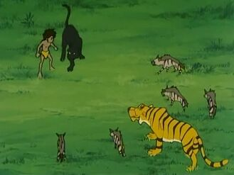 Mowgli and Bagheera vs. Shere Khan and Jackals