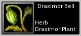 Draximor petal quick short