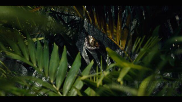 File:Indominus Rex (113).jpg