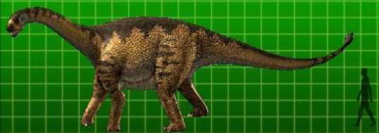 File:Shunosaurus-1-.jpg