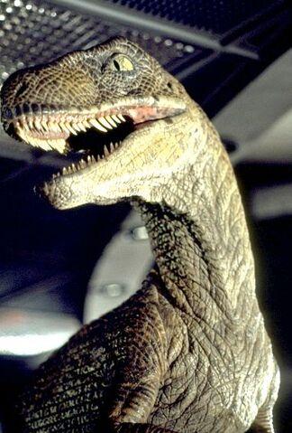 File:Jurassic-park-raptor.jpg