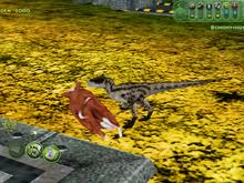 Velociraptorwcow