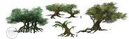 Concepts jp trees 1