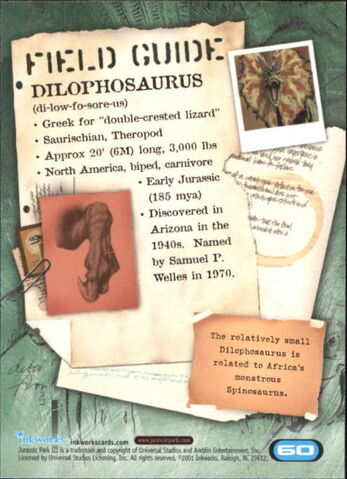 File:2001 Jurassic Park III 3-D 60 Dilophosaurus back.jpg