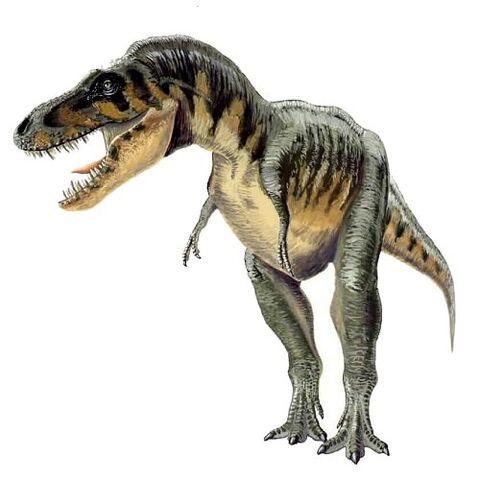 File:Tarbosaurus efremovi aa.jpg