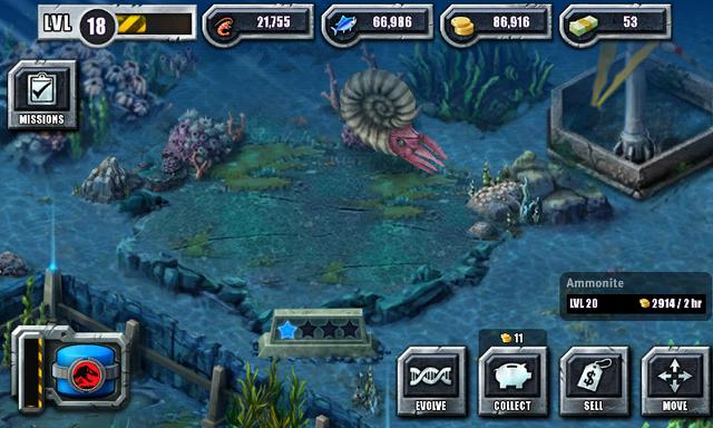 File:Ammonite 2nd evo.png