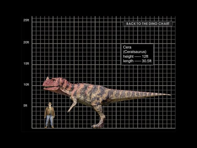 File:Ceratosaurus-1-.jpg