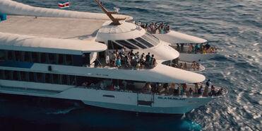 JW boat trip