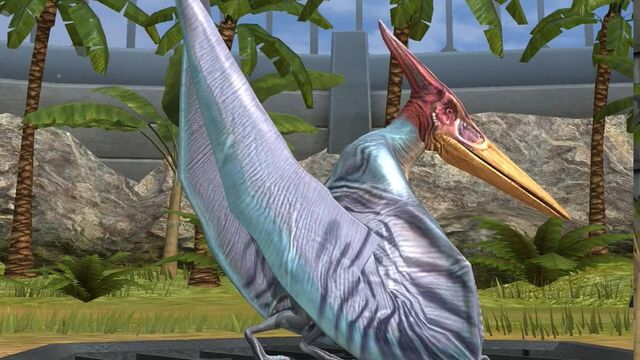 File:PteranodonJWTG.jpg