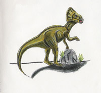 File:Microceratops.jpg