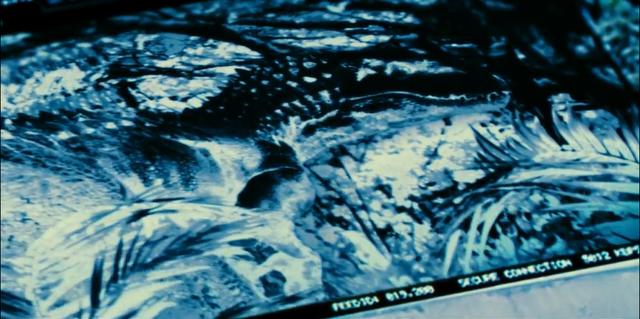File:Indominus Rex (62).png