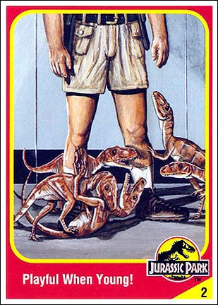 File:Robert muldoon collector card.jpg