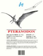 Ingen Dinosaur Info Sheets Pteranodon