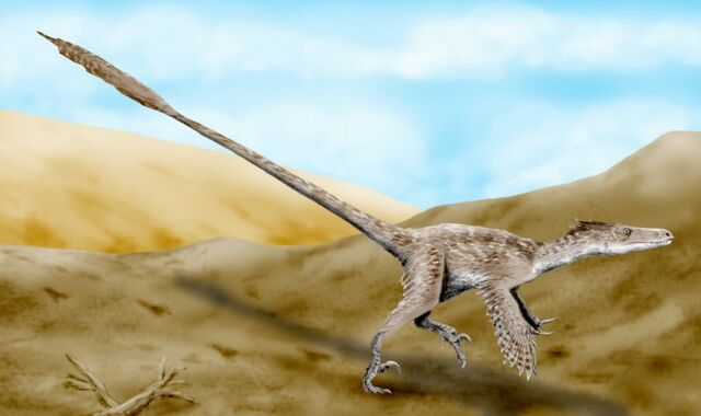 File:Velociraptor mongoliensis pencil drawing.jpg