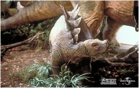 File:Stegosaurus baby portrait.jpg