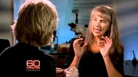 60 Minutes Presents B-Rex