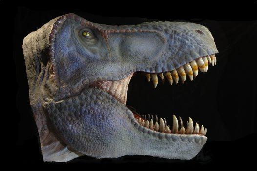 File:Tyrannosaur.jpg