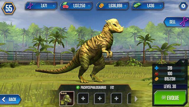 File:Pachycephalosaurus by wolvesanddogs23-d988tqx.jpg