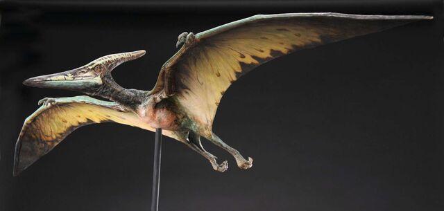File:Pteranodonmodeljp3.jpg