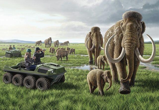 File:Pleistocene park.jpg