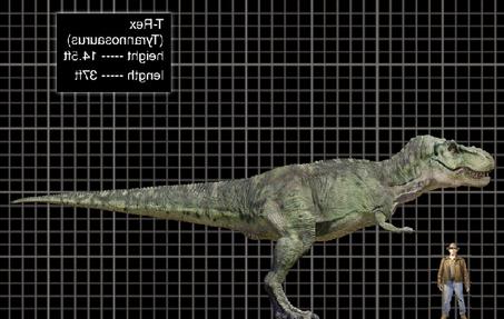 Indominus rex vs JPIII Spinosaurus | Jurassic Park wiki | Fandom ...