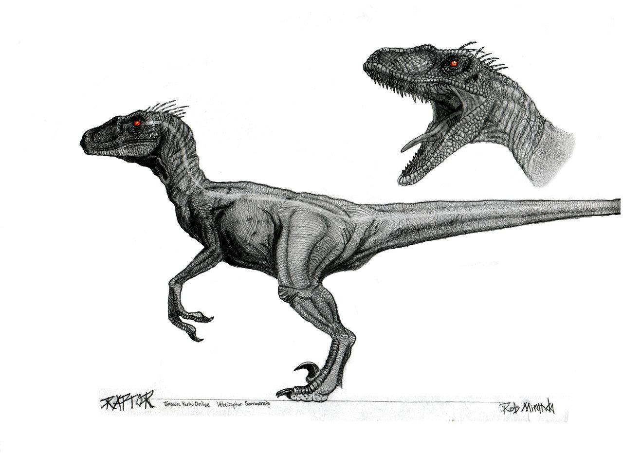 Image Velociraptor Macho Jpg Jurassic Park Wiki