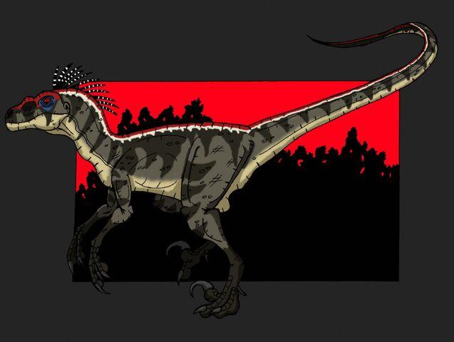 File:Velociraptor sornaiensis.jpg