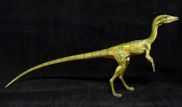 File:Compsognathus marquette.jpg