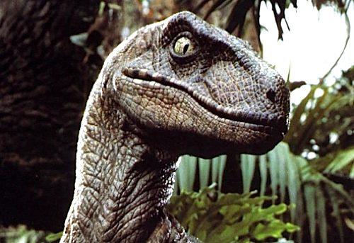 File:141 velociraptor-1-.jpg