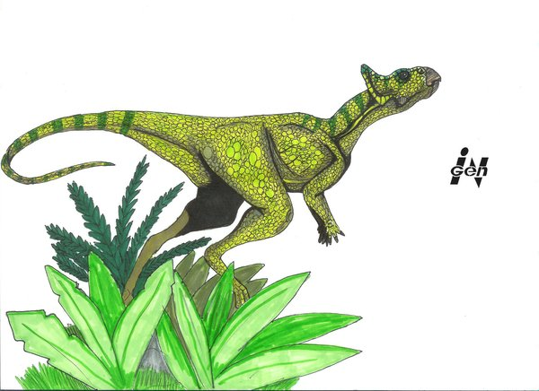 File:Jurassic Park Microceratus by hellraptor.jpg