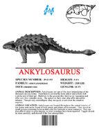 Ingen Dinosaur Info Sheets Ankylosaurus