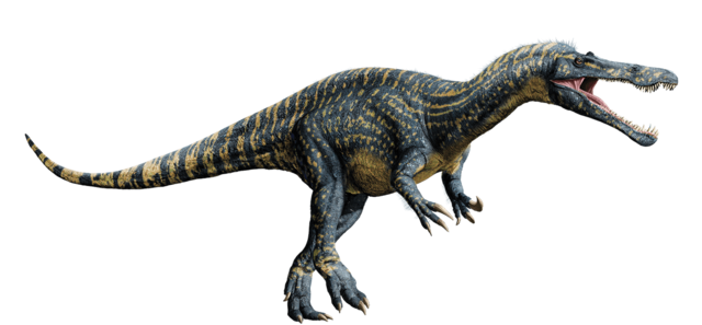 File:Suchomimus-detail-header.png