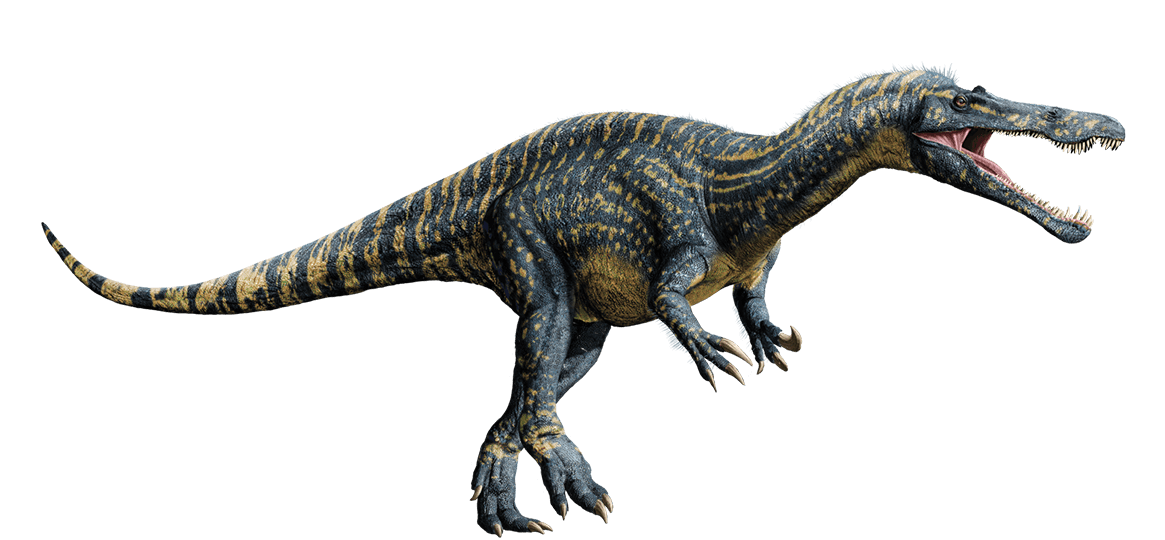 Image result for Suchomimus