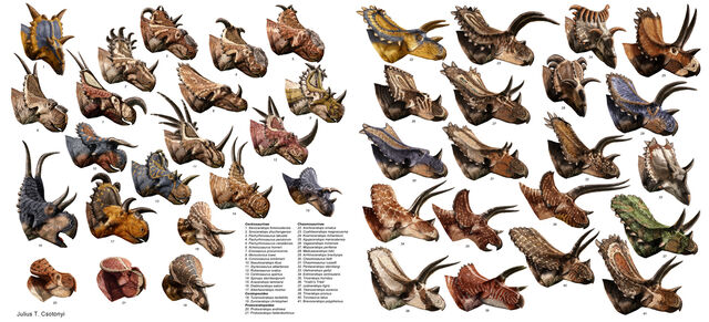 File:Csotonyi ceratopsians 1300.jpg