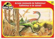 GallimumusCollectorCard