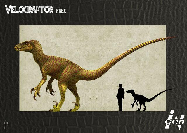File:Jp free raptor remake by jelsin-d5epouc.jpg