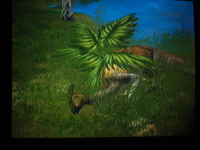 File:Parasaurolophus sleeping.jpg