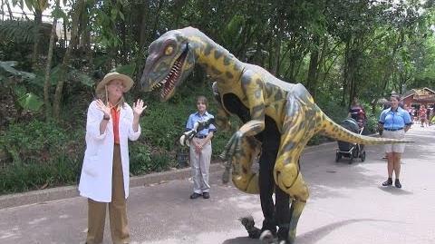 Meet Professor Parker Woodson and her pet velociraptor (Including JP raptor sounds) in Dinoland at Disney's Animal Kingdom
