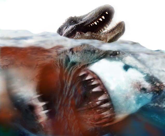 MEGA SHARK VS REXY