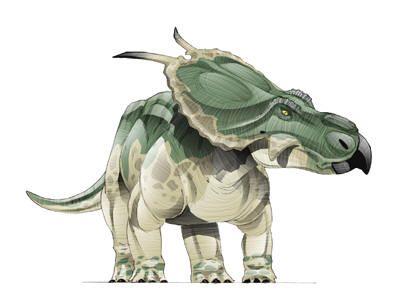 Datei:Achelousaurus.jpg