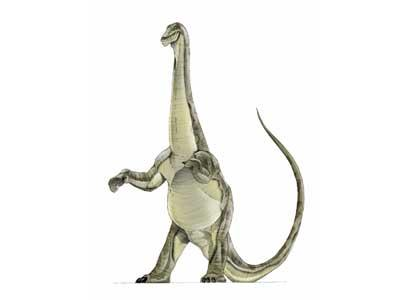 File:Alamosaurus JPI.jpg