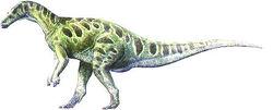 Callovosaurus2