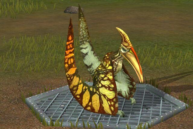 File:Pterodactylus (31).jpg