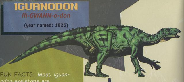 File:Iguanodon3.png