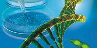 Testing genes