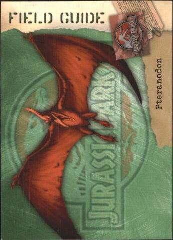 File:2001 Jurassic Park III 3-D 58 Pteranodon front.jpg