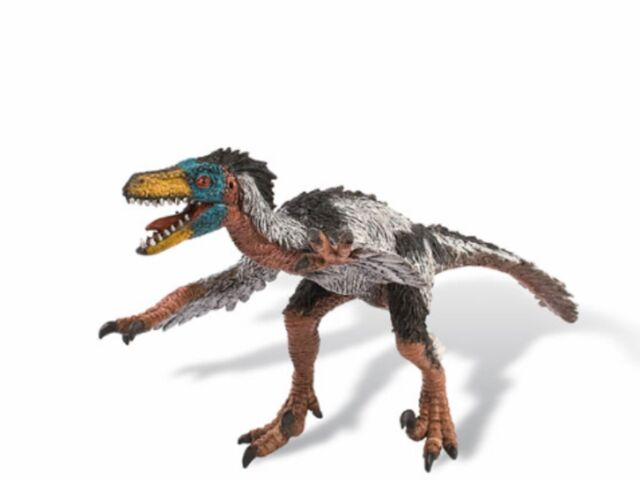 File:Featheredraptor15.jpg